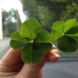Doppeltes Glück