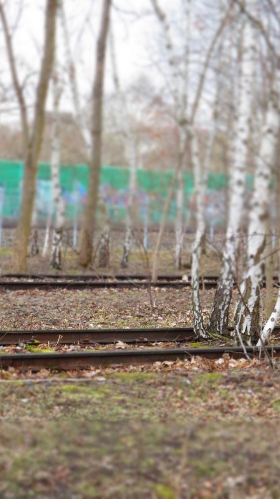 X - Zehnter Stern - Park am Gleisdreieck, Berlin (4/6)