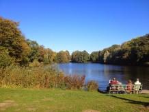 Der große Teich