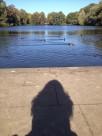 Schattenspiele am Teich