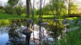 Steine und Wasserspiegelungen