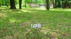 Liebe im Gras