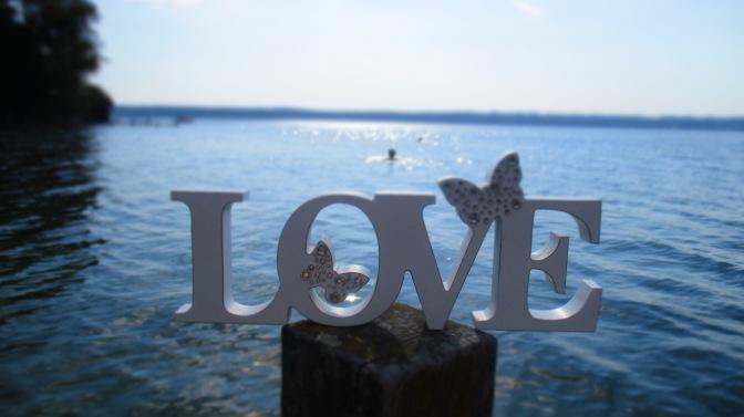 🎶 Love is everywhere 🎶