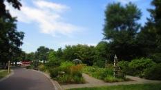 Der schöne Rosengarten