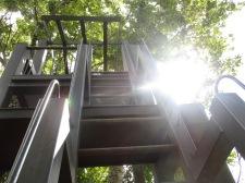 Ganz schön steil, aber ich kletter hoch!