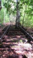 noch mehr verwachsene Gleise