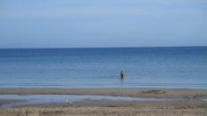 Die einzige kleine Schwimmerin, die sich auch ins Wasser traute