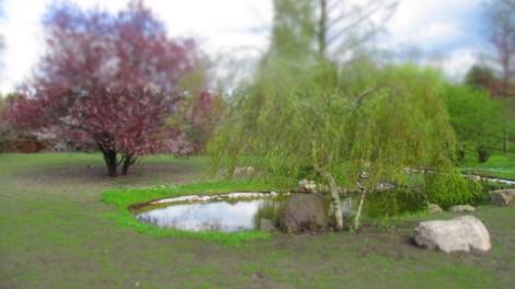 Gärten_der_Welt_6283