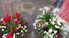 Gärten_der_Welt_6297