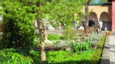 Gärten_der_Welt_6302