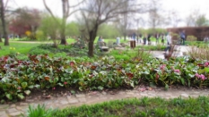 Gärten_der_Welt_6308