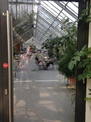 das gemütliche Café im Gewächshaus