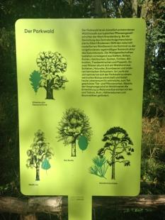 Botanischer_Garten_Pankow_6963