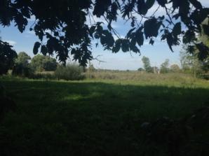 Botanischer_Garten_Pankow_6972