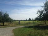 Botanischer_Garten_Pankow_6983