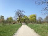 KarowerTeiche_0950